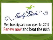 Early-Birds-membership-2019-700x400