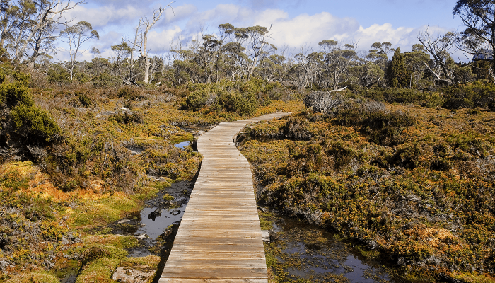 bushwalking for everyone